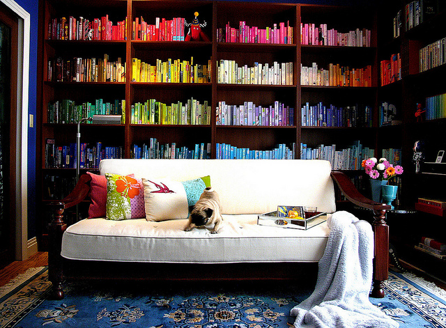 Colour Coded Book Collection - Photo by Maegan Tintari