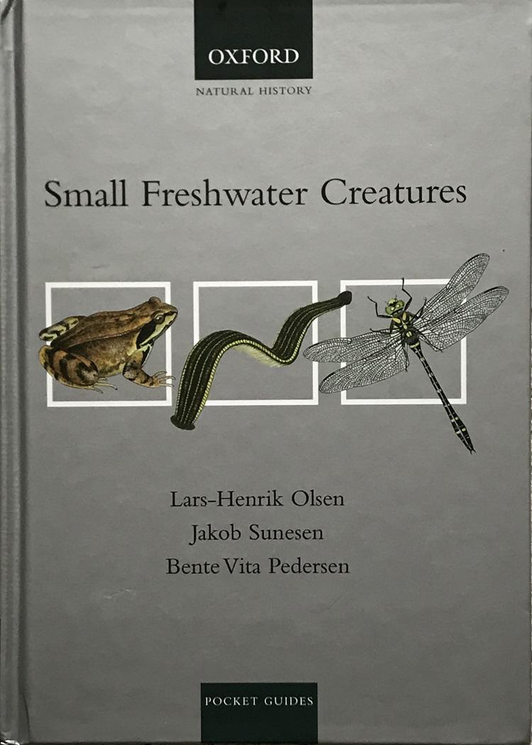 Small Freshwater Creatures By Lars-Henrik Olsen
