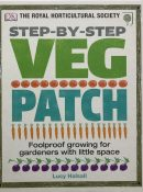 Step-by-Step Veg Patch: Foolproof Growing for Gardeners with Little Space By Lucy Halsall