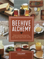 Beehive Technology By Petra Ahnert
