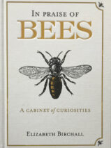 In Praise Of Bees: A Cabinet Of Curiosities By Elizabeth Birchall