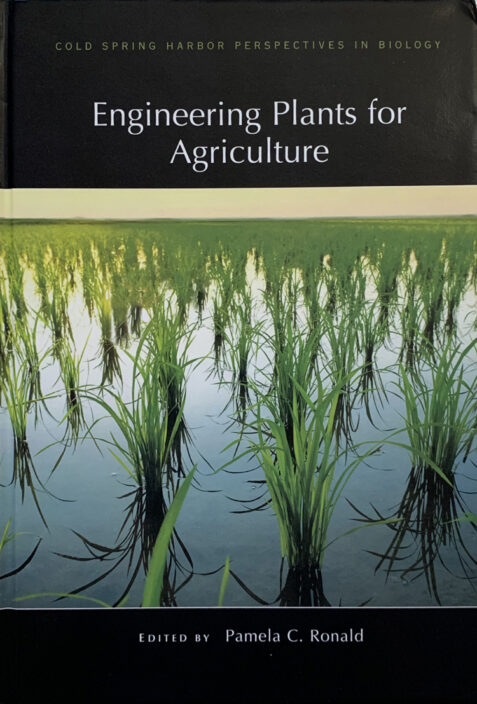 Engineering Plants for Agriculture By Pamela C. Ronald